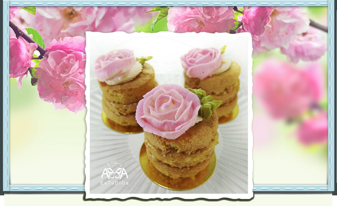 abba-estudios-inicio-minicakes